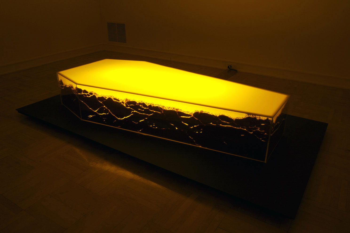 Untitled (coffin & ants)1